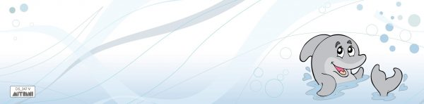 חיפוי זכוכית DS_347