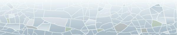 חיפוי זכוכית V-EC1306