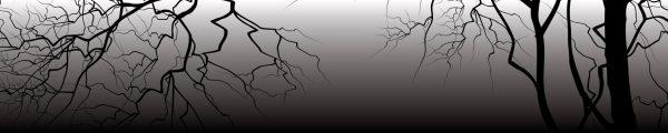 חיפוי זכוכית V-MD519