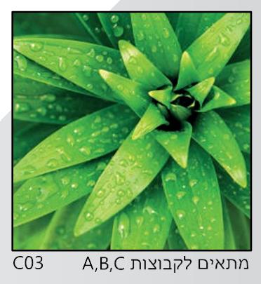 אריחי זכוכית C03