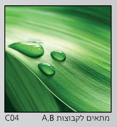אריחי זכוכית C04