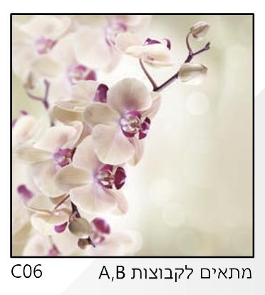אריחי זכוכית C06