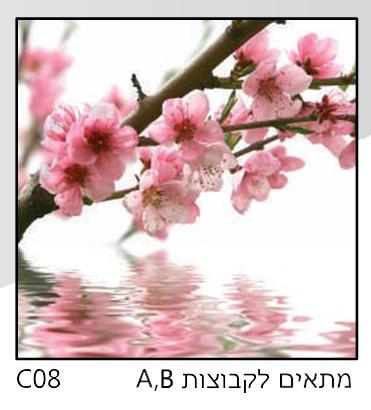 אריחי זכוכית C08