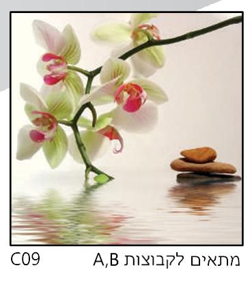 אריחי זכוכית C09