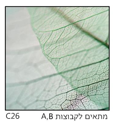 אריחי זכוכית C26