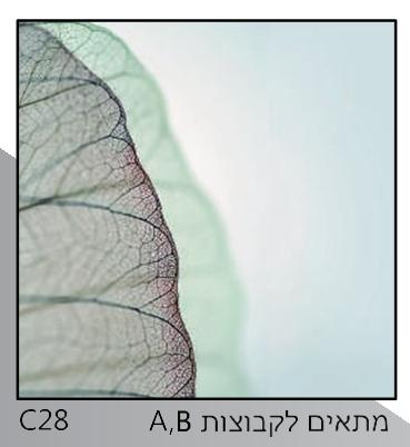 אריחי זכוכית C28