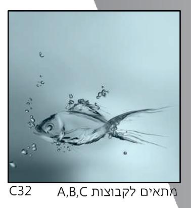 אריחי זכוכית C32