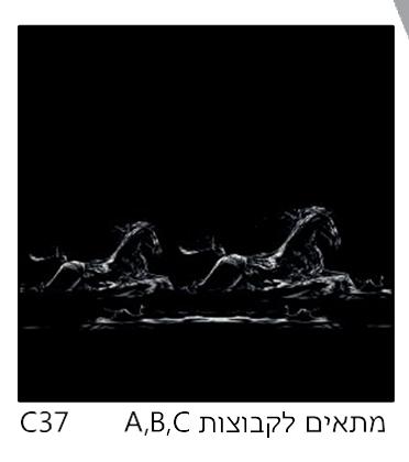 אריחי זכוכית C37