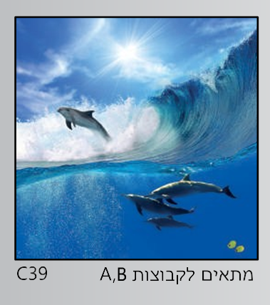 אריחי זכוכית C39