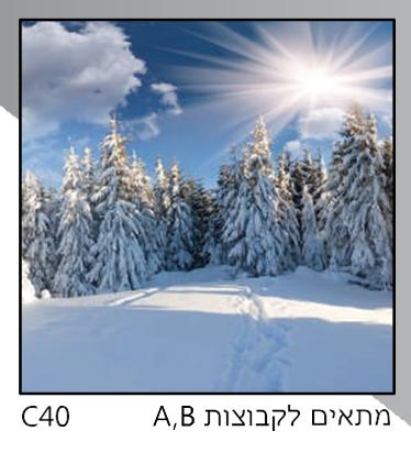 אריחי זכוכית C40