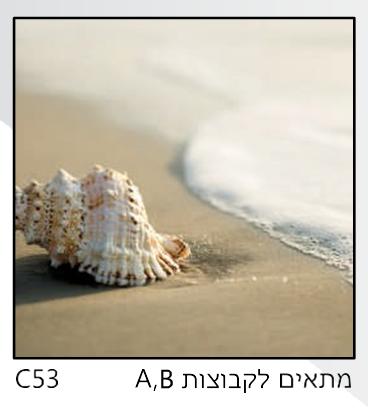אריחי זכוכית C53