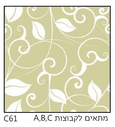 אריחי זכוכית C61