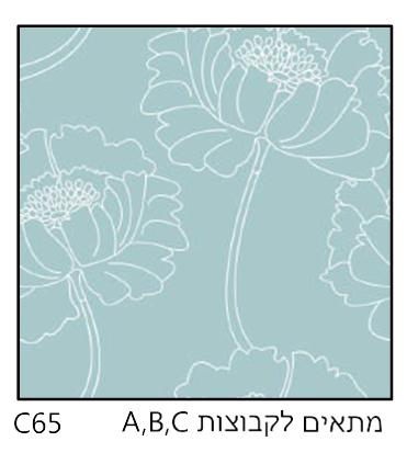 אריחי זכוכית C65