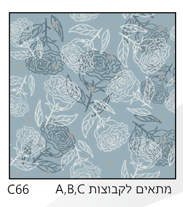 אריחי זכוכית C66